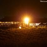 Black Swan Winery Restaurant wedding reception at night